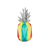 Pineapple small multi coloured